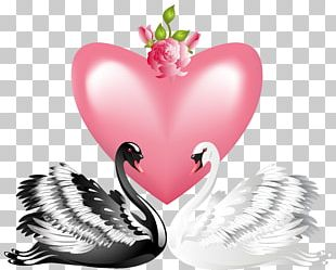 Swan Valentine's Day Heart PNG