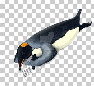 King Penguin Marine Mammal Animal Beak PNG