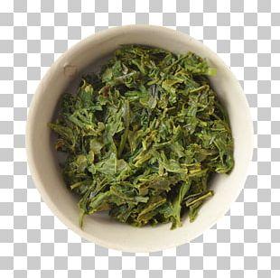 Sencha Nilgiri Tea Green Tea Gyokuro PNG