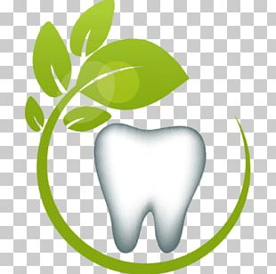 Tooth Holistic Dentistry Oral Hygiene Health PNG