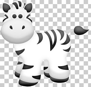 Baby Jungle Animals Zebra Zoo PNG