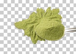 Green Tea Matcha Latte Uji PNG