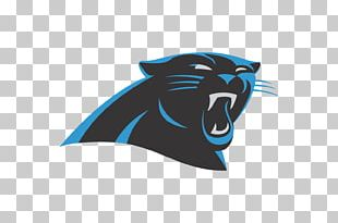 2016 Carolina Panthers Season NFL New England Patriots Super Bowl 50 PNG