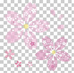 Cherry Blossom Silhouette Book Illustration 蕾 PNG