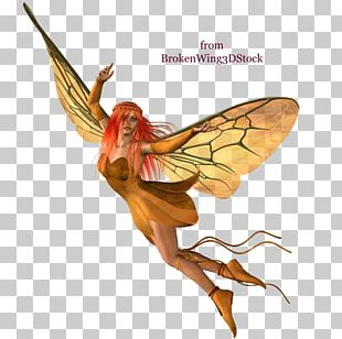 Fairy Desktop Autumn PNG