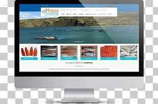 Web Design Web Page Digital Agency PNG