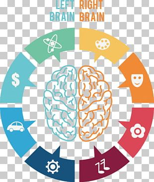Brain Icon PNG