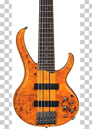 Contrabass Guitar Electric Guitar Ibanez String Instruments PNG