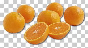 Clementine Tangerine Tangelo Mandarin Orange PNG