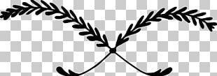Twig Plant Stem Leaf White PNG