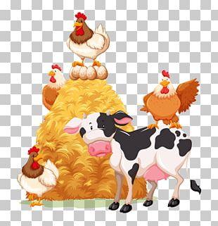 Cattle Livestock Farm Goat PNG
