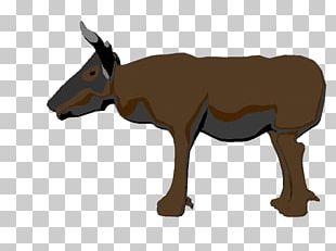 Cattle Mule Mustang Donkey Deer PNG