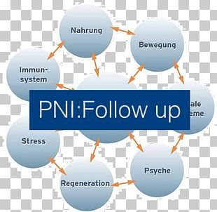 Psychoneuroimmunology Orthomoleculair Diëtist Castricum | Corinne Pool Dietist Corinne Pool Neurology Lausitzer Platz PNG