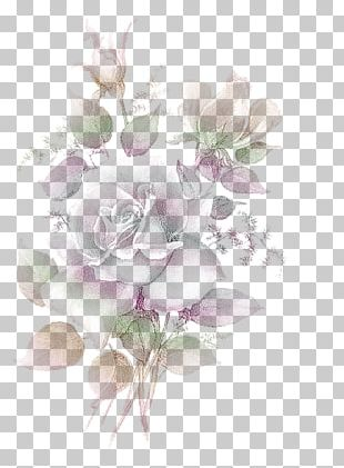 Garden Roses Flower Bouquet Cabbage Rose Floral Design PNG