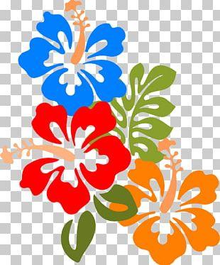 Hawaiian Hibiscus Flower PNG