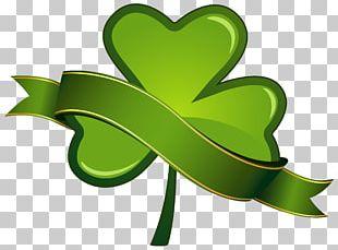 Saint Patrick's Day Shamrock PNG