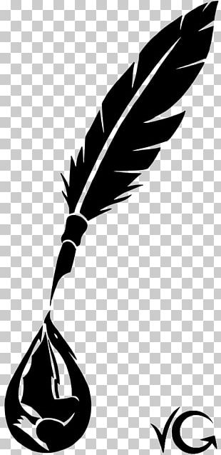 Feather Beak White Line PNG