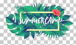 Summer Camp Graphic Design Logo Camping PNG