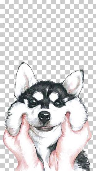Siberian Husky IPhone X PNG