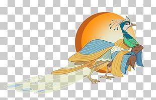 Bird Feather Beak Peafowl Galliformes PNG