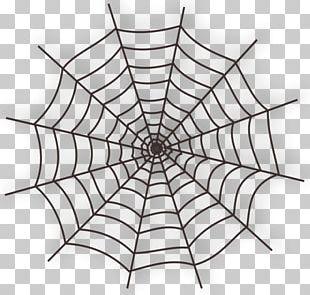 Spider Web Cartoon PNG