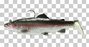 Swimbait Rainbow Trout Fishing Baits & Lures PNG