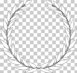 Olive Branch Olive Wreath PNG