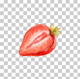 Watercolor Painting Drawing Strawberry PNG