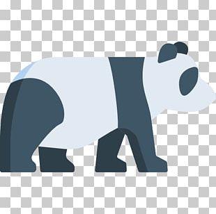 Chengdu Bear Giant Panda Computer Icons Graphics PNG