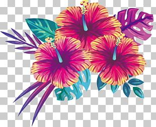 Blooming Summer Flowers PNG
