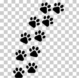 Cat Dog Paw Kitten Tiger PNG