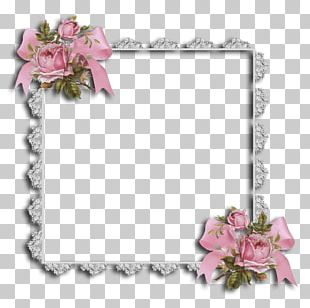Floral Design Cut Flowers Frames Rose PNG