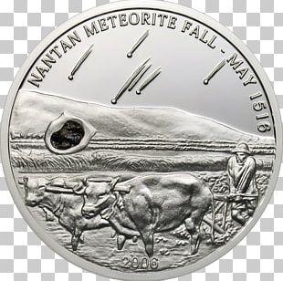 Arctic Fox Canada Silver Coin Silver Coin PNG