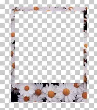 Frames Instant Camera Paper PNG