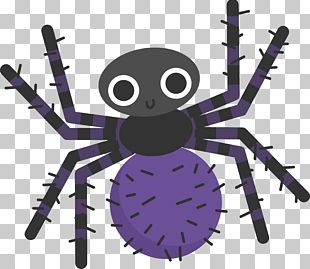 Spider Web Cartoon Reptile Halloween PNG