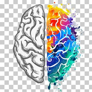 Mount Mary University Emotion Learning Labiotech UG Neuroscience PNG