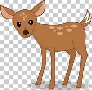 White-tailed Deer Reindeer Pony PNG
