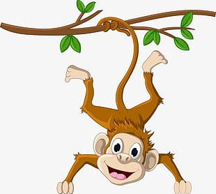 Monkey Hanging From A Tree PNG