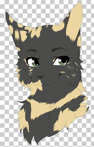 Whiskers Cat Snout PNG