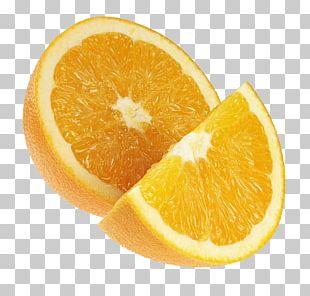 Tangelo Grapefruit Rangpur Vegetarian Cuisine Citrus Xc3u2014 Sinensis PNG