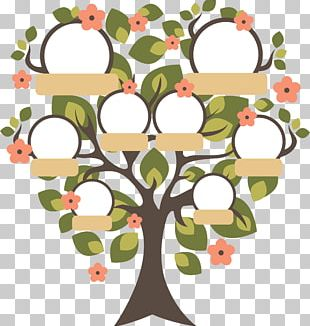 Family Tree Genealogy Childhood PNG