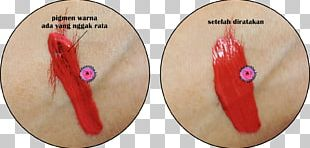 Lipstick Food Coloring Lip Balm PNG