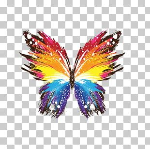Butterfly IPhone X Painting Art PNG