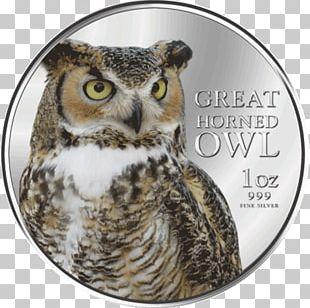 Great Horned Owl Bird Of Prey Beak PNG