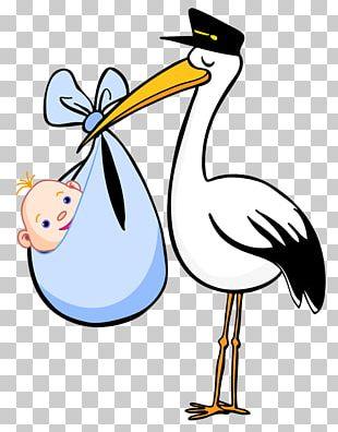 Postman Stork PNG