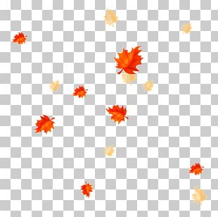 Petal Leaf Autumn Leaves Desktop PNG