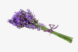 Lavender Bouquet PNG