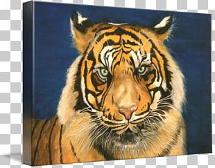 Tiger Painting Art Whiskers Wildlife PNG