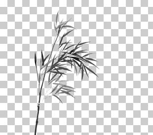 Bamboo Watercolor Painting Line Art Ink Wash Painting PNG