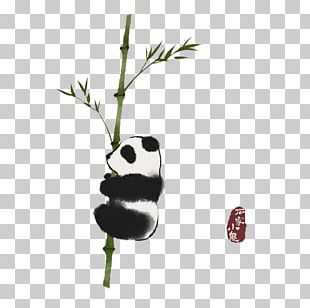 Giant Panda Red Panda Ink Wash Painting Bamboo Illustration PNG